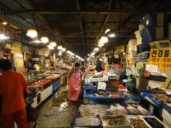 鹭梁津水产市场
