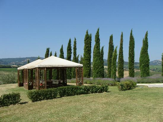Relais Villa Grazianella - Fattoria del Cerro: Pergola, perfect for hot middays