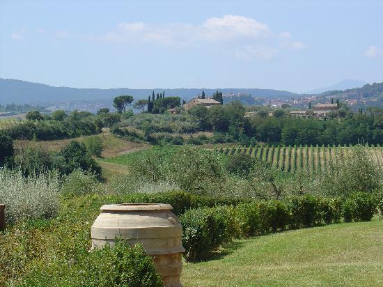 Relais Villa Grazianella - Fattoria del Cerro: Surroundings