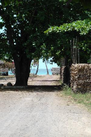Chez Eugenie: Chemin menant à la plage