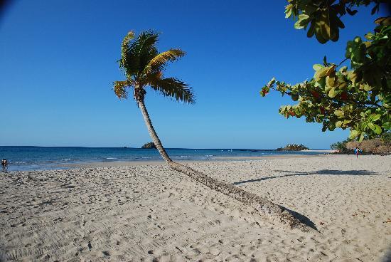 Chez Eugenie: La plage