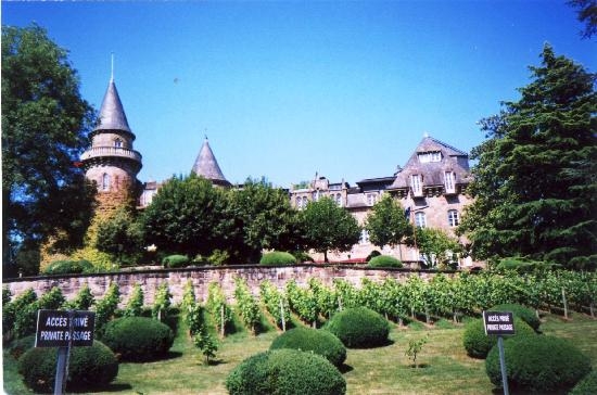 Chateau de Castel-Novel: Terraced vineyards in the Gardens of the Castle