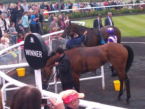 Newcastle Racecourse: Winners enclosure