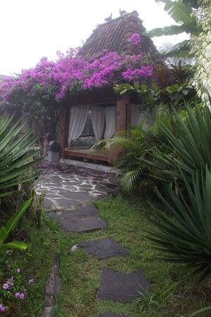 Villa Sumbing Indah : Lovely garden