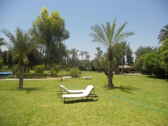 Villa Al Assala Palmeraie: jardin