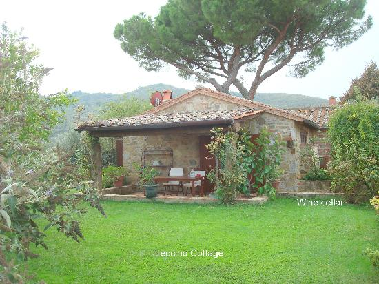 Il Fontanaro: Our Lovely Leccino Cottage at Fontanaro
