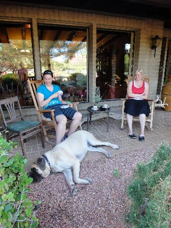 Grace's Secret Garden B&B: Front patio with hummingbird feeder and Grace's dog