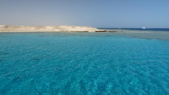 SENTIDO Oriental Dream Resort : Marsa ex-Mubarak_gita atolli e coralli