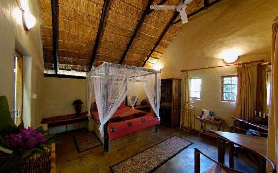 WE Bushcamp & Horse Safaris: Cottage