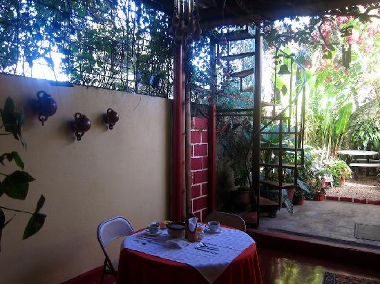 Hotel Pacande: Mit Blick in den schönen Garten