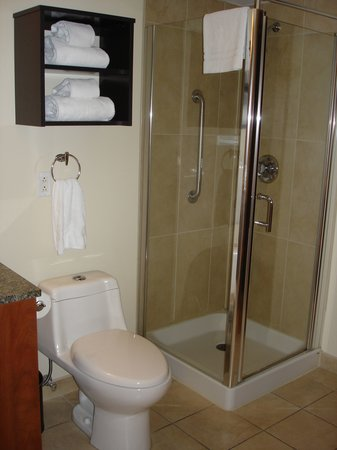 Embassy Suites by Hilton Montreal : Spacious Bathroom