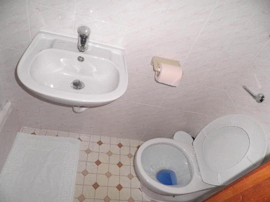 Windsor Guest House : clean toilet