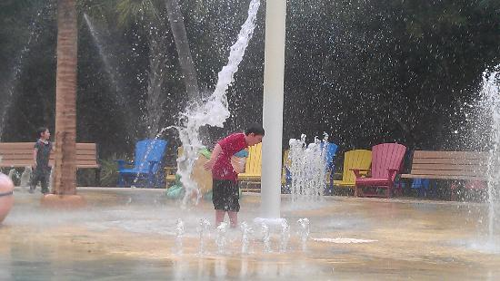 Kids Enjoying The Water Park Picture Of Central Florida Zoo Botanical Gardens Sanford