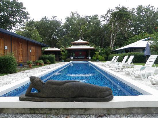 Blue Osa Yoga Retreat and Spa: Pool and spa area