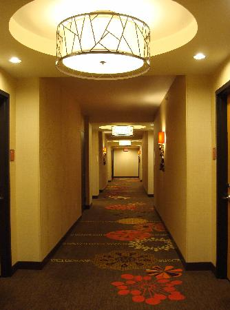 Embassy Suites by Hilton Houston Downtown: Loved the carpet pattern!