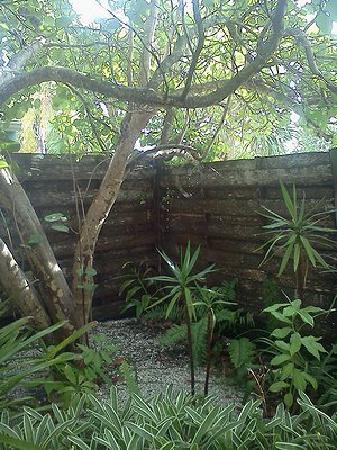 Siesta Pearl : Corner of private patio.