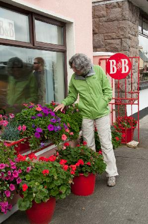 Wits End B & B: Admiring the flowers at Wits End