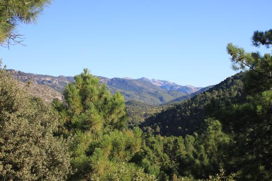 Natural Park Sierra de Cazorla: View of the valley from hotel