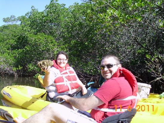 Kayak Tours Bradenton Florida