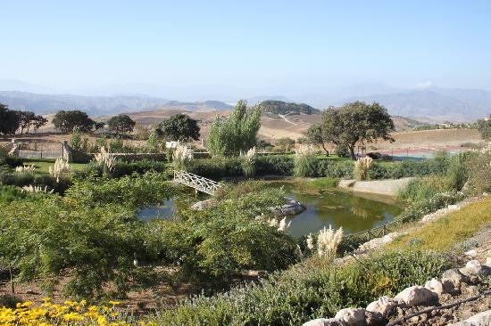 Hotel La Fuente del Sol: Garden