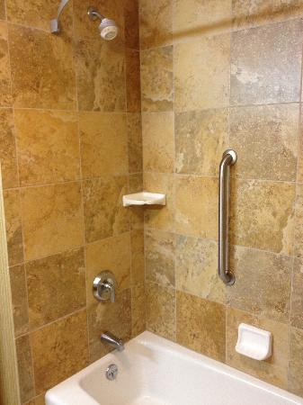 Hampton Inn Tomah: Shower