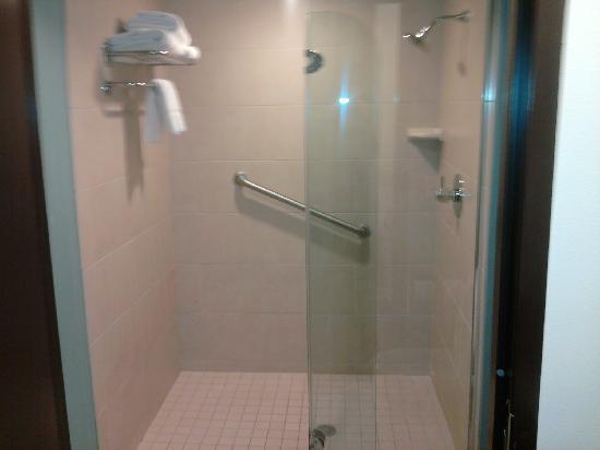 Hyatt Place Richmond Airport: Party Shower! (Except that weird half-door...)