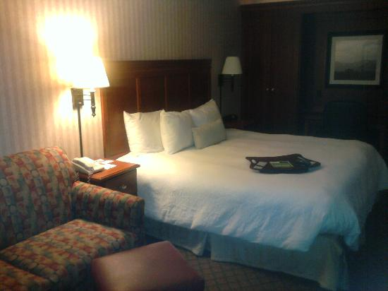 Hampton Inn Charlottesville: Room