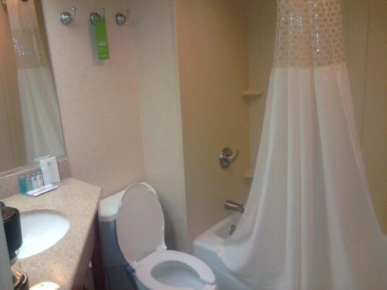 Hampton Inn Charlottesville: Bath