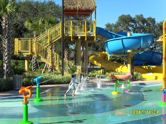 Renaissance Orlando at SeaWorld: Kids Pool area.