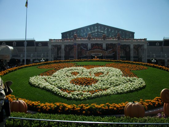 Tokyo Disneyland: A Spooky Mickey M! In front garden of TDL.