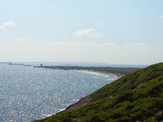 Platja d es Cavallet: Der Strand Platja d'es Cavallet in der nähe von Ibiza