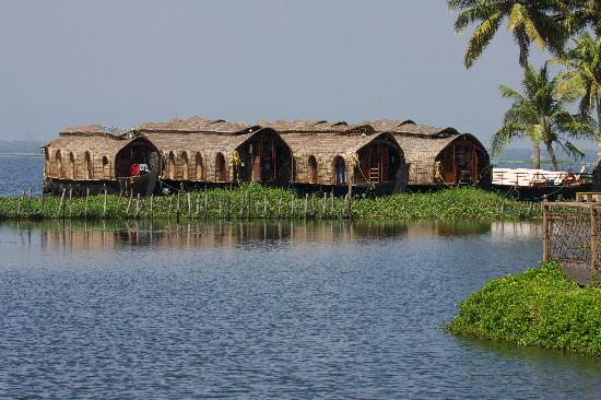 Kumarakom, India: Some of the houseboats used by the resort