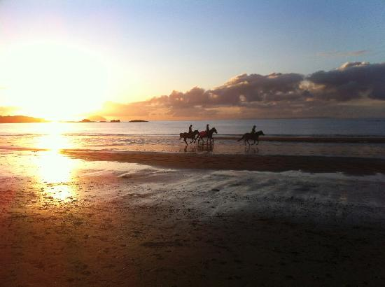 Wildings Hotel & Restaurant : Watching the horses at sunset along Maidens beach