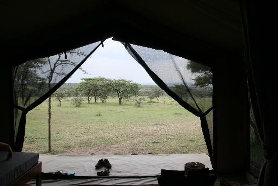 Naboisho Camp, Asilia Africa: The view sitting in your tent was amazing