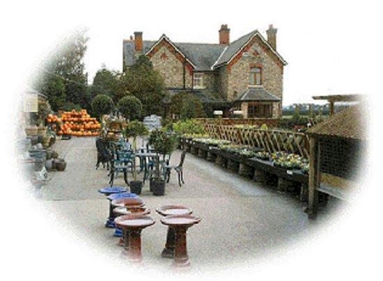Sandbach, UK: Garden