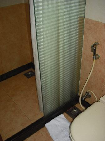 Shervani New Delhi : bathroom shower which floods the room