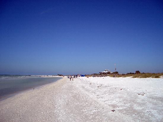 Dunedin, FL: Beach