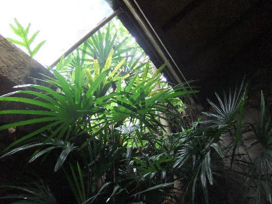 Guci Guesthouses: Blick aus dem großen Badezimmer