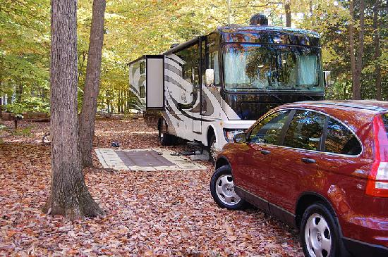 Pohick Bay Regional Park Campgrounds: Campsite