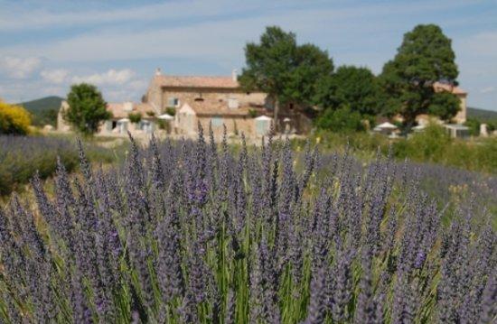 Photo of Les Terres De Saint Hilaire Ollieres