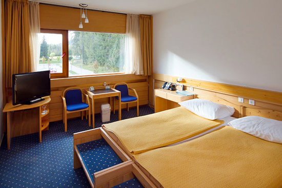 Hotel Spik Alpine Wellness Resort: Spik 3*, hotel room
