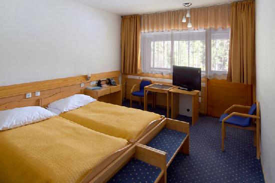 Hotel Spik Alpine Wellness Resort: spik 3* standard room