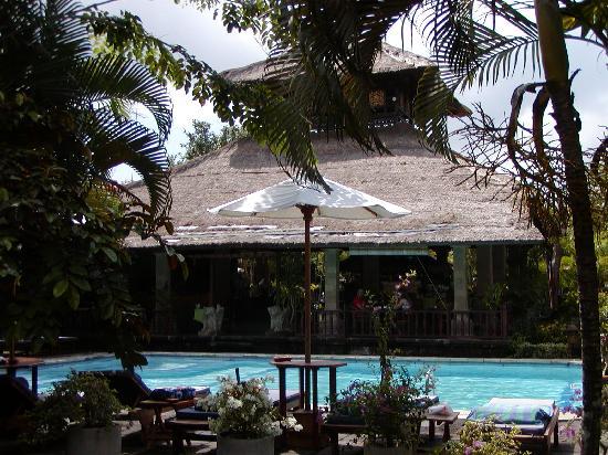 Bali Agung Village: la piscina