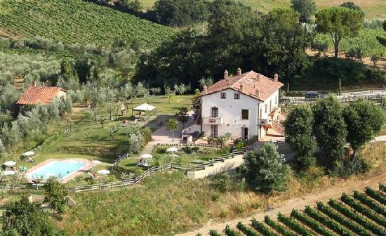 Poggio Olivo Via di setinaiola 3a Acquaviva di Montepulciano -SI