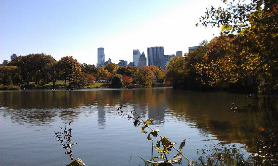 CityRover Walks NY: The Lake in Central Park