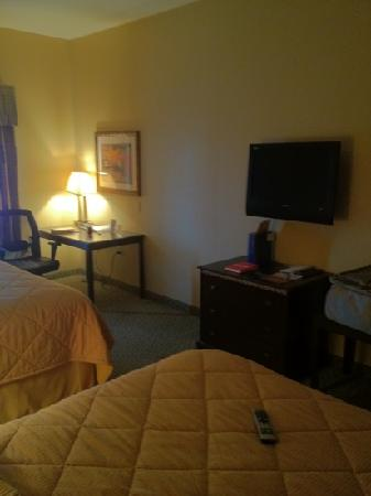 Comfort Inn Marion: tv and work space.
