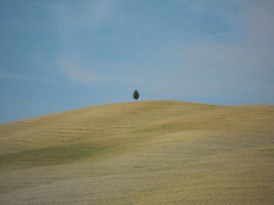 Agriturismo Terrapille: la Biancana