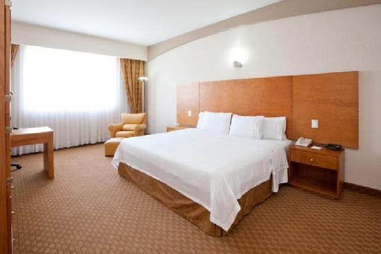 Holiday Inn Express San Luis Potosi: Habitacion estandar