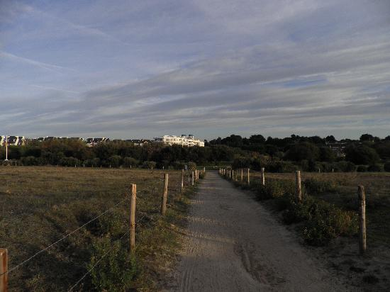 Miramar La Cigale Hotel Thalasso & Spa: vu de la plage