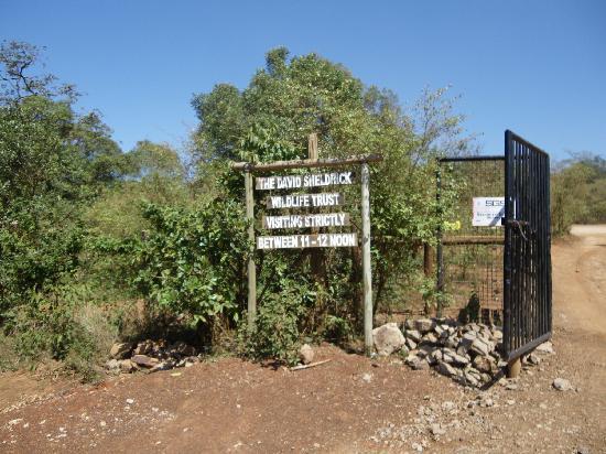 David Sheldrick Wildlife Trust: entrada principal